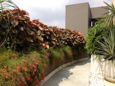 Sharma Residence - terrace